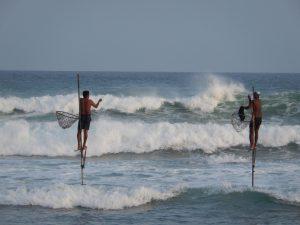 De beroemde stokvisers van Sri Lanka werken recht voor de deur!