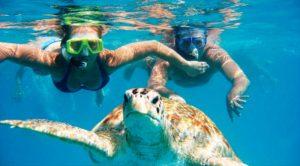 Prachtig snorkelen recht voor deur!